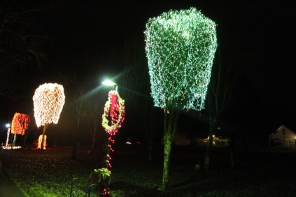 christmas in the park arab 2018 (53)