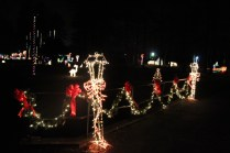 christmas in the park arab 2018 (61)