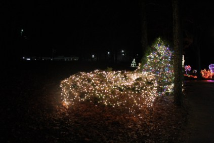 christmas in the park arab 2018 (67)