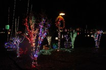 christmas in the park arab 2018 (68)