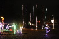 christmas in the park arab 2018 (69)