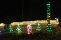Christmas At The Falls 2019 (116)