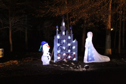Pell City Christmas In The Park 2019 (34)