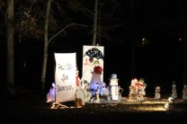 Pell City Christmas In The Park 2019 (36)
