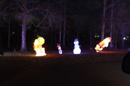 Pell City Christmas In The Park 2019 (42)