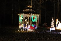 Pell City Christmas In The Park 2019 (48)