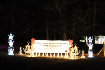 Pell City Christmas In The Park 2019 (6)