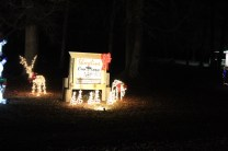 Pell City Christmas In The Park 2019 (7)