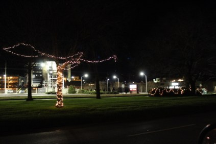 Quintard Avenue Christmas Lights 2019 (34)
