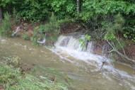 flood 009