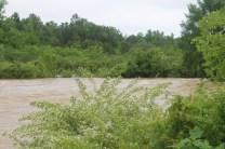 flood 037