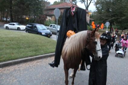 halloween 368