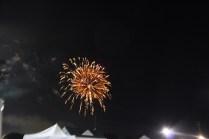 Freedom Festival Fireworks 16 (93)