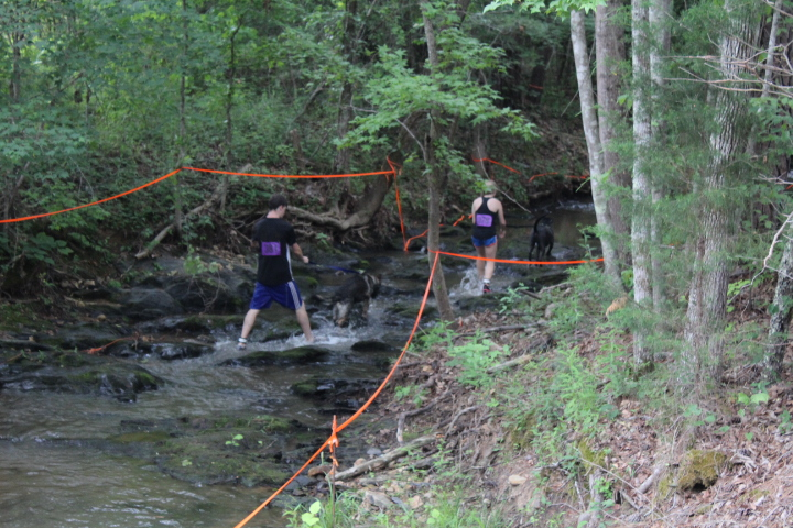 Pictures And Video From The 2017 US Canine Biathlon In Anniston