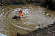 US Canine Biathlon (19)