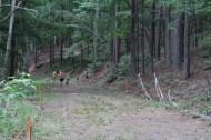 US Canine Biathlon (6)