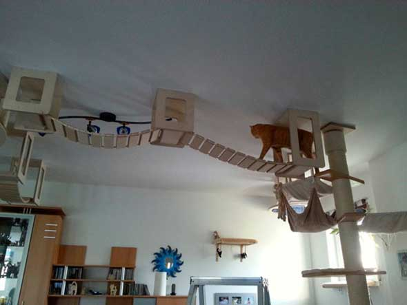 Juguetes y muebles modulares para gatos para paredes y
