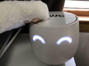 Cujo Smart Firewall is pet-friendly