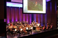 Zelda-Symphony-of-the-Goddesses-2016-15-1