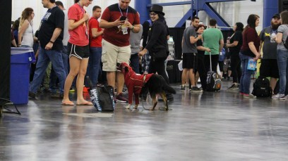 Comicpalooza 2017 - Flash Dog