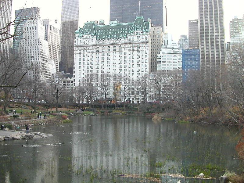 Plaza_Hotel2.jpg?w=800&ssl=1