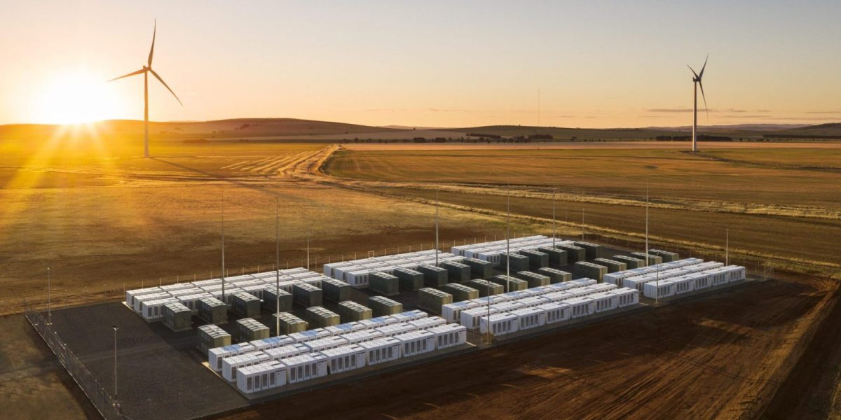 Tesla Battery Farm made $800,000 in a few days