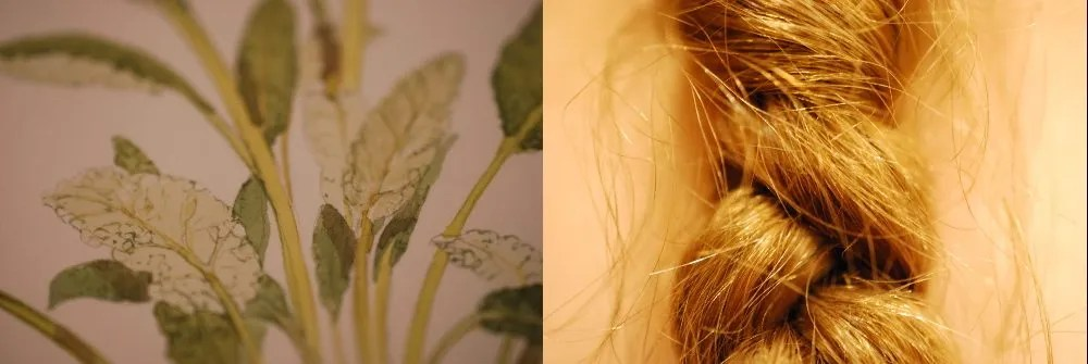 Watercolor details, or strands of hair. Photos: Jenny Bristol