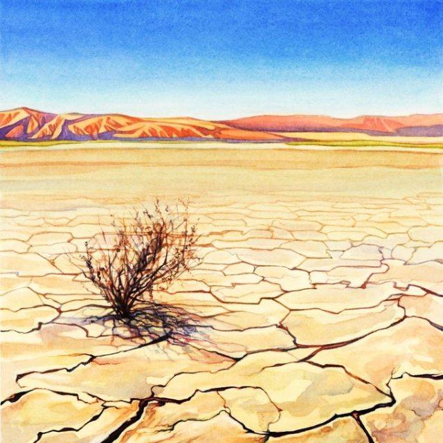 Evolution Climate desert
