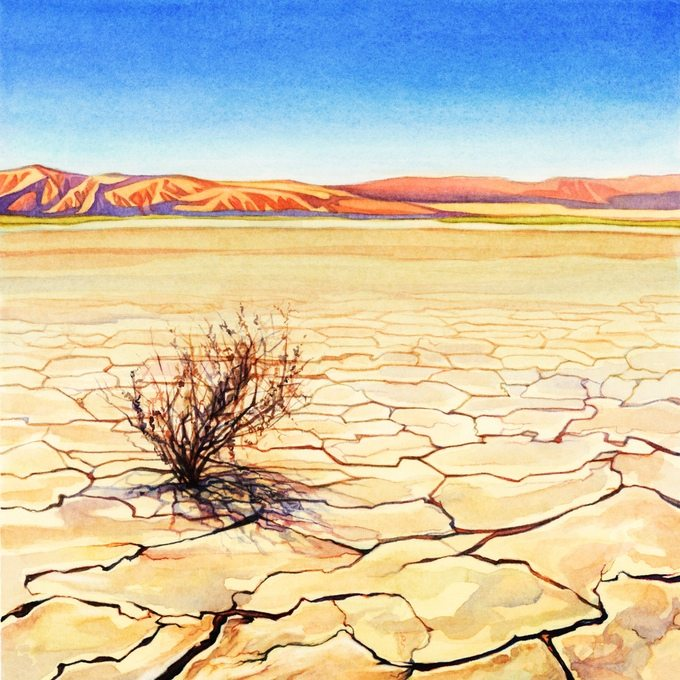 Evolution Climate desert