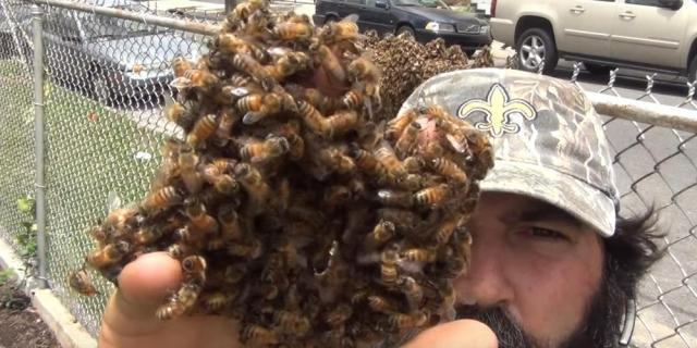 JP the Beeman holding bees in his oddly specific Youtube Channel