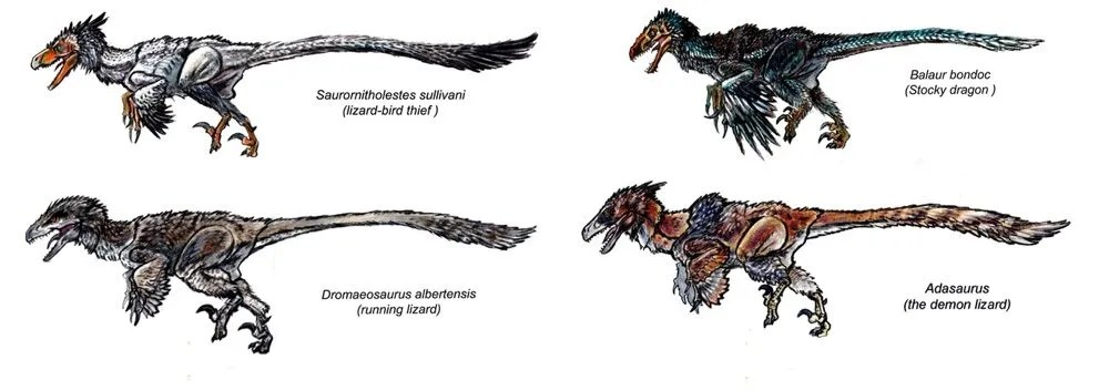 Beasts of the Mesozoic Colors