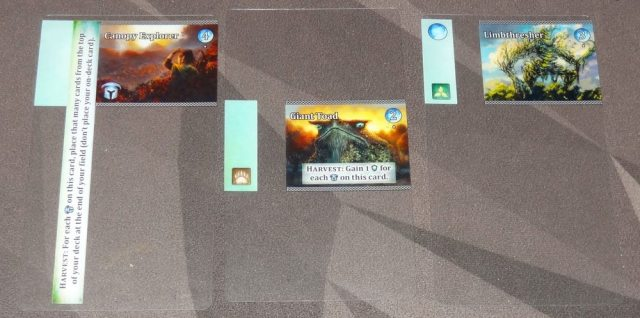 Vale of Magic Level 1 advancements