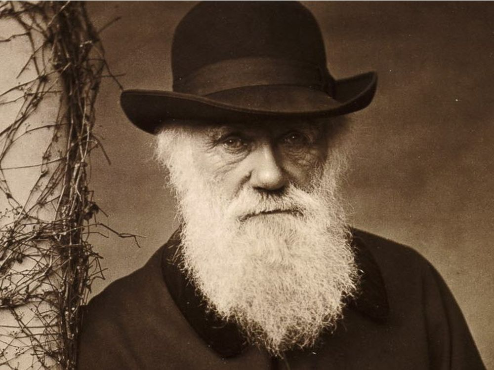 5 Interesting Facts to Celebrate Charles Darwin Day