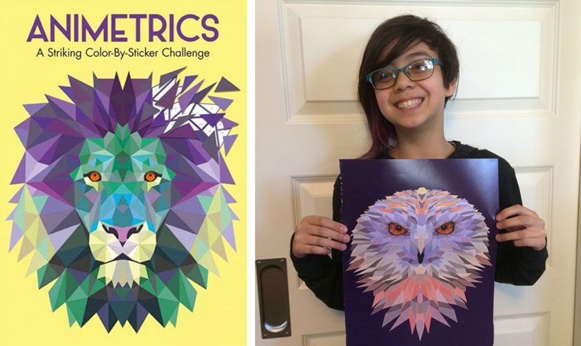Animetrics, and daughter with finished owl picture