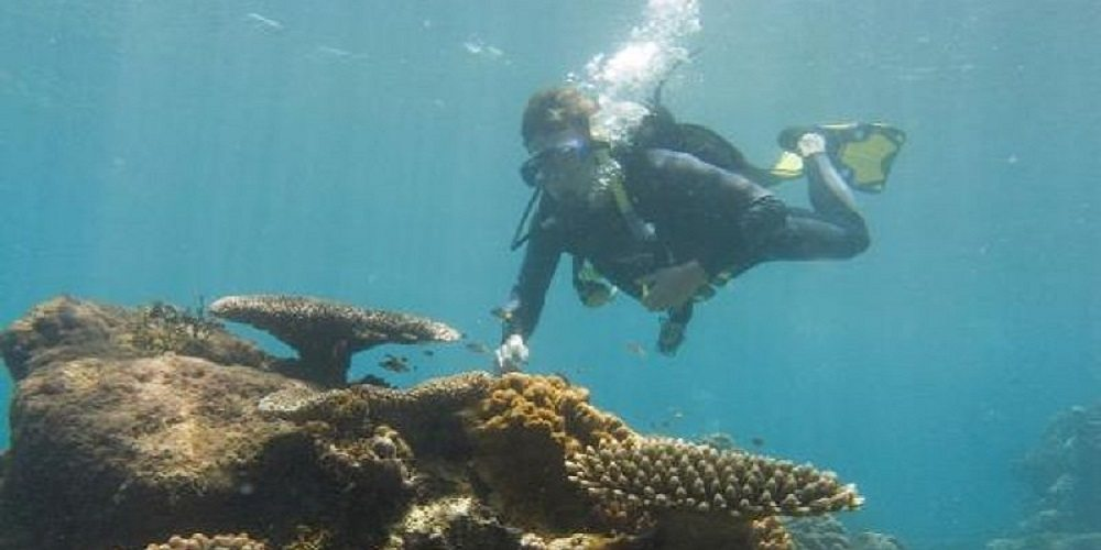 Junior Scuba Diving Adventures: The Great Barrier Reef