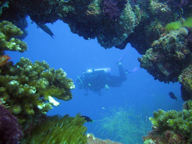 junior scuba diving great barrier reef