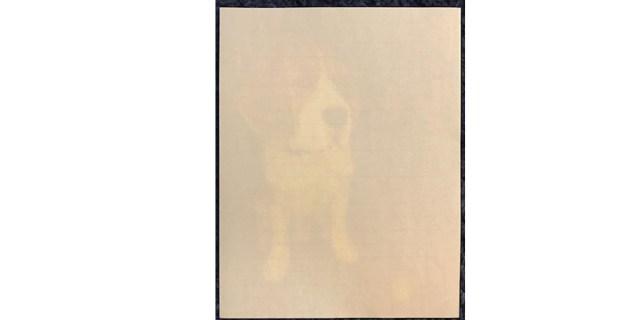 Stationery Test  Image: Dakster Sullivan