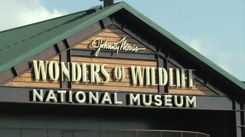 Wonders of Wildlife Is a Family Conservation Destination