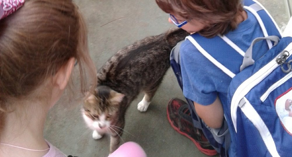 Two kids petting a striped housecat on their front porch.