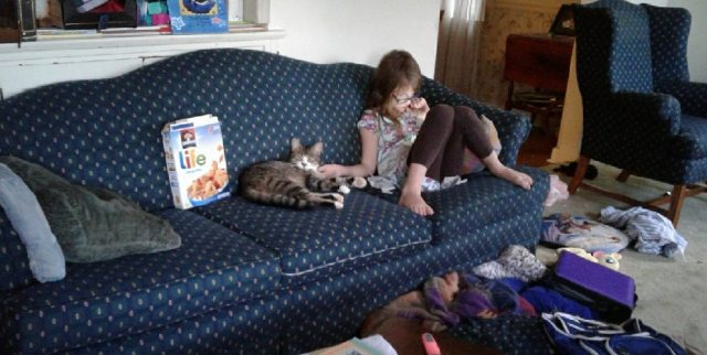 Grey tabby beside 8yo girl on a couch in a messy living room