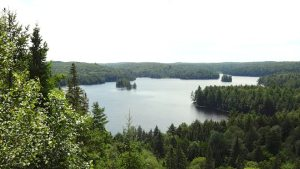 Ridge view on Algonquin Park Track and Tower trail