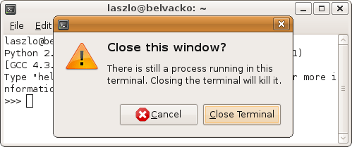 GNOME Terminal will prompt the user if a process is still running.