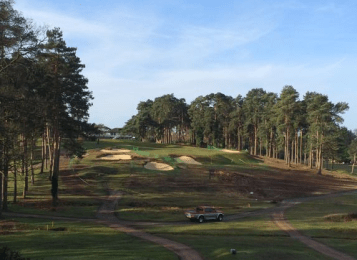 After - Green no longer crowded, beautiful contours of the land revealed