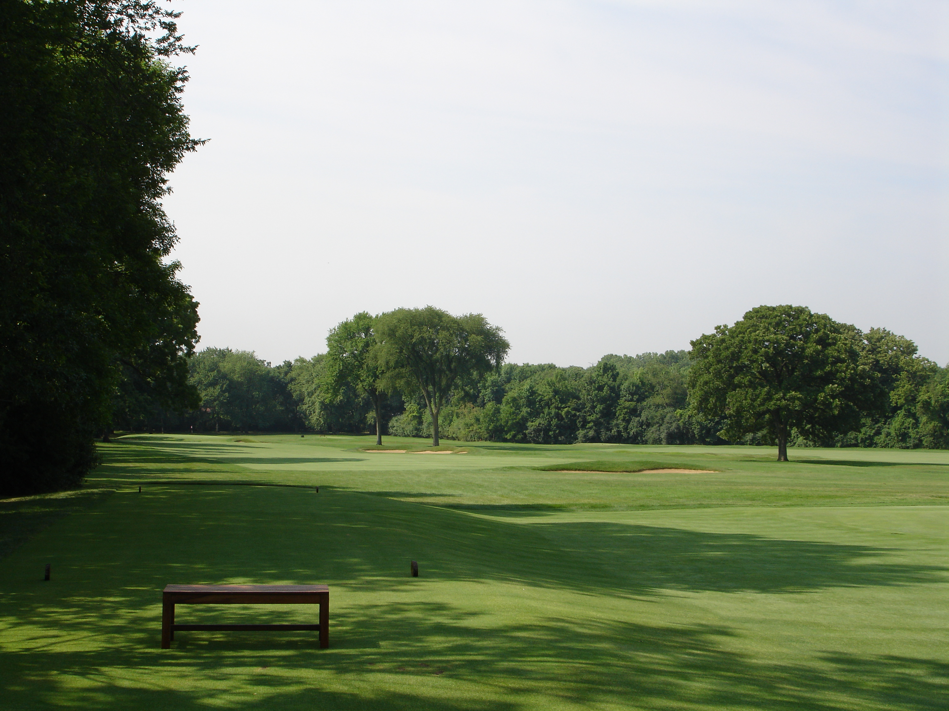 Old Elm #12 - After tree removal and bunker renovation.