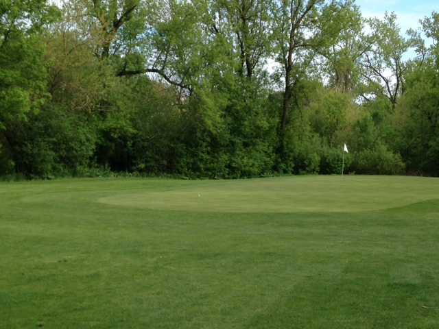 The green will expand further short and left, and blend into a fairway height runoff that highlights the existing contours.