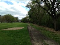 Grass beginning to grow in previously overgrown area. Fairway bunker and path will be removed, graded, and grassed.