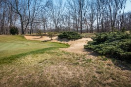 #4 - Juniper and other vegetation is used to give DC's bunkers a beautiful, naturalized look (photo by Scott Vincent)