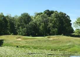 #9 - Par 3 - Tee zoom to the narrow green