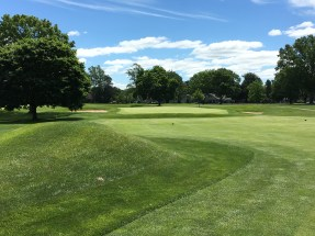#11 - Par 4 - Approach from the left side