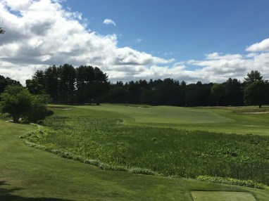 #8 - Par 4 - The angled tee shot on the 8th, bite off as much as you want